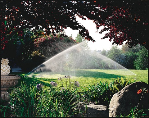 Rain Bird sprinkler system_green yard