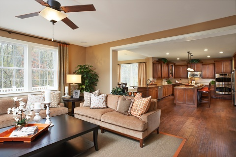 Home of the week for Great american builders